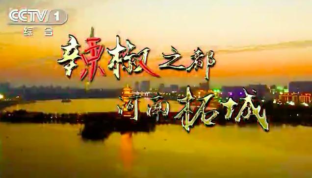 河南柘城辣椒央视广告片
